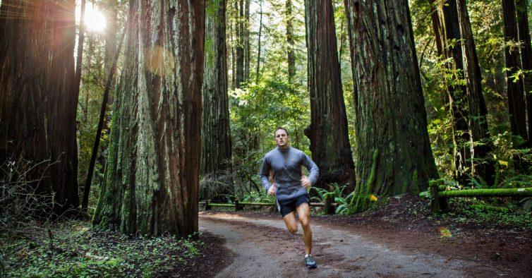 Wine Trail Ervideira: uma prova para com vista para florestas, rios e trilhos