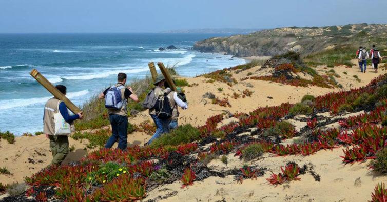 """""""Os 200 Melhores Percursos de Trekking de Portugal"""" escolhe os 5 mais impressionantes"""
