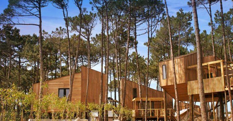 Bukubaki o novo glamping de portugal tem casas na rvore for Hoteis zona centro com piscina interior
