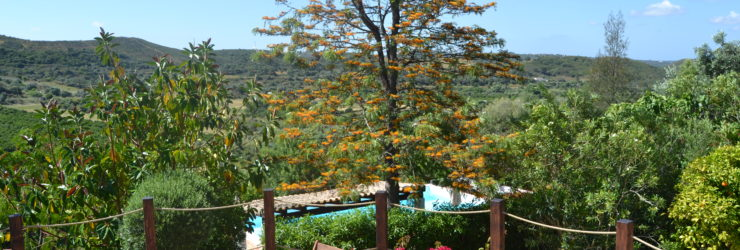 Vale Fuzeiros Nature Guest House