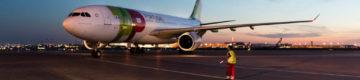 Cadela morre em porão de avião da TAP depois de voo longo
