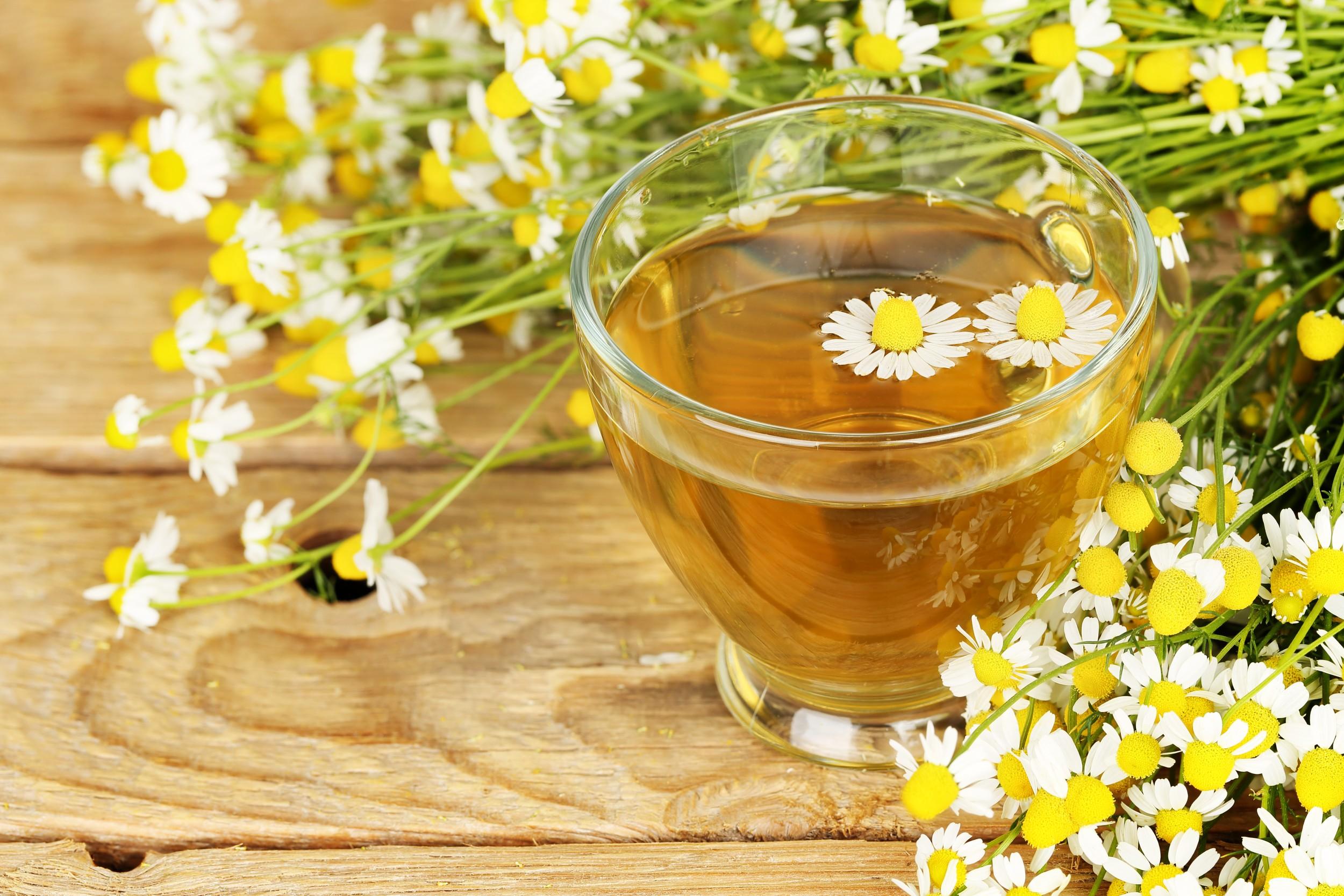 Benefícios do Chá de Camomila Para a Saúde Pinterest.com