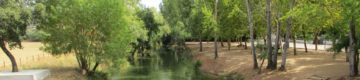 Este trilho secreto em Santarém vai dar a uma praia fluvial de água cristalina