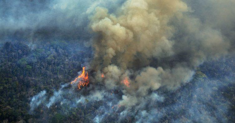 Na segunda-feira há uma concentração pela Amazónia em Lisboa