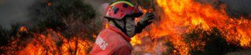 Atenção: quase 40 concelhos de Portugal estão em alerta máximo de incêndio