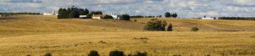 Caminhos de Santiago vão ter mais dois percursos em Portugal