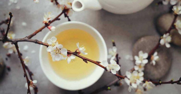 Chá branco com canela