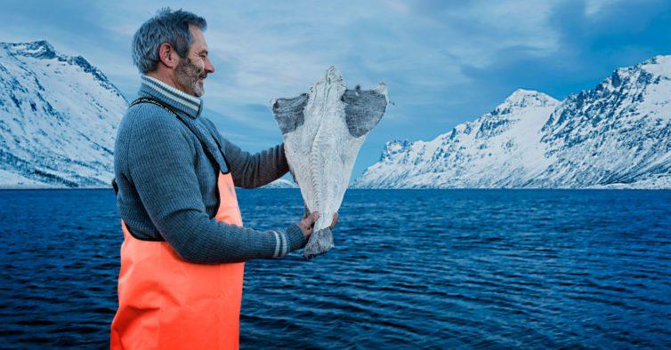 Sabe porque é que o bacalhau tem a forma de triângulo nos supermercados?