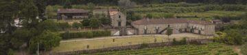 Este trail vai passar por uma paisagem vinícola incrível no norte do País