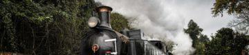 Vai poder passear num comboio a vapor pela linha do Vouga