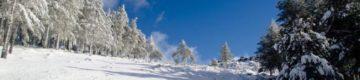 Neve na Serra da Estrela encerrou estradas — e vai voltar