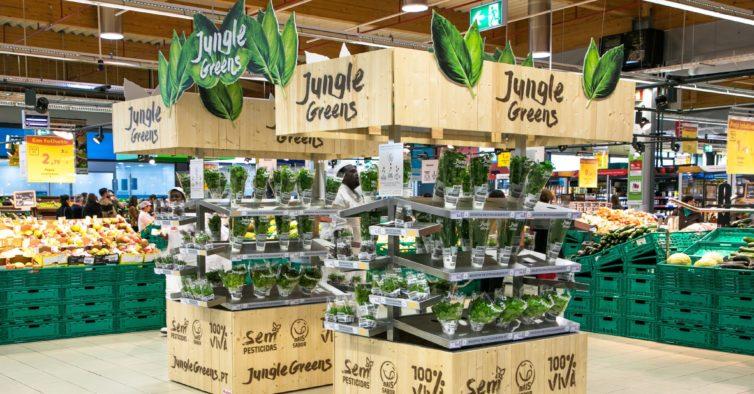 Os novos sacos da Auchan são feitos a partir de restos de plástico das lojas