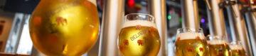 O aniversário do bar do elefante cor-de-rosa tem novidades e cerveja grátis