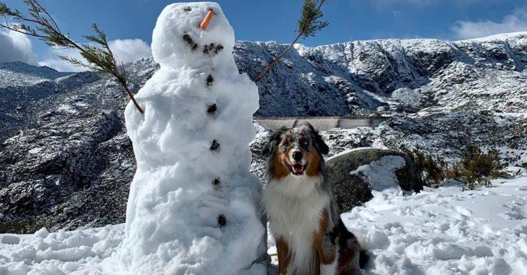 O primeiro nevão do ano na Serra da Estrela foi épico (e invadiu o Instagram)