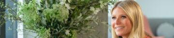 Gwyneth Paltrow usa máscara de luxo por causa do coronavírus (que já esgotou)
