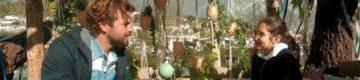 """A """"Árvore dos Desejos"""" está de volta à SIC com uma nova temporada"""