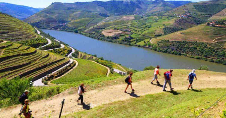 I Love Douro: o novo projeto com os melhores vinhos da região (e não só)