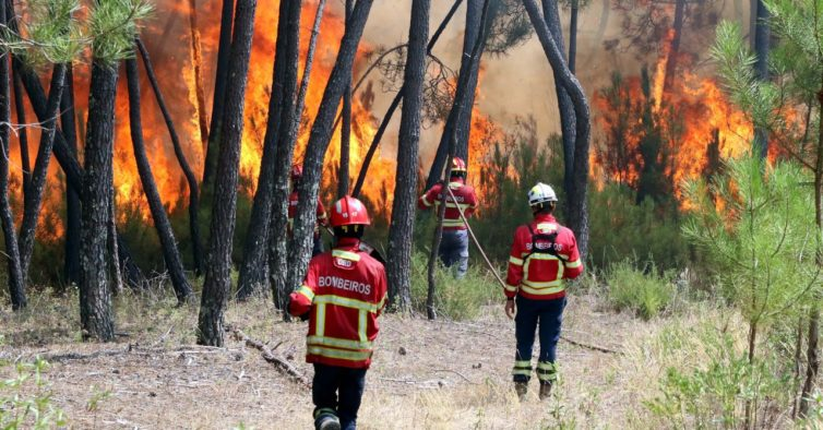 incêndios