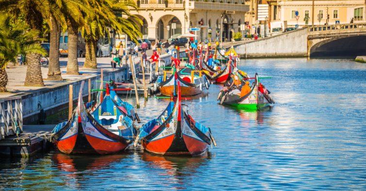Moliceiros regressam à ria de Aveiro com novas medidas de restrição